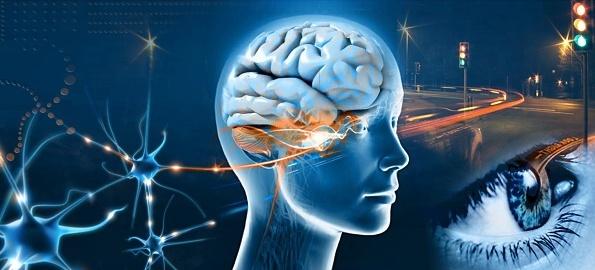 Vă considerați inteligenți? Mensa organizează o nouă sesiune de teste la Universitatea din Oradea