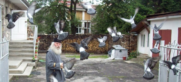 Un patriarh depășit, ahtiat după titluri și bani, vrea să facă legea în Banat. Ghinion.