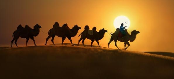 """""""Impresii din Mongolia Interioară"""", o expoziție de la care nu trebuie să lipsiți!"""